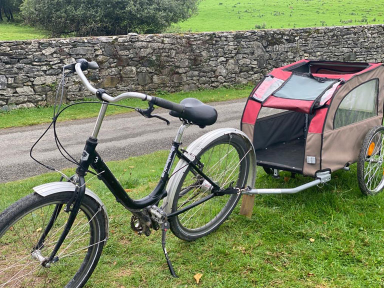 Bike with dog trailer